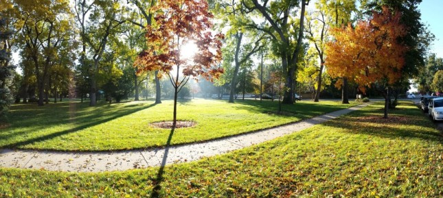 autumn_thompson_park-1024x459